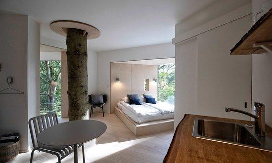 Baumwipfelhotel Dänemark